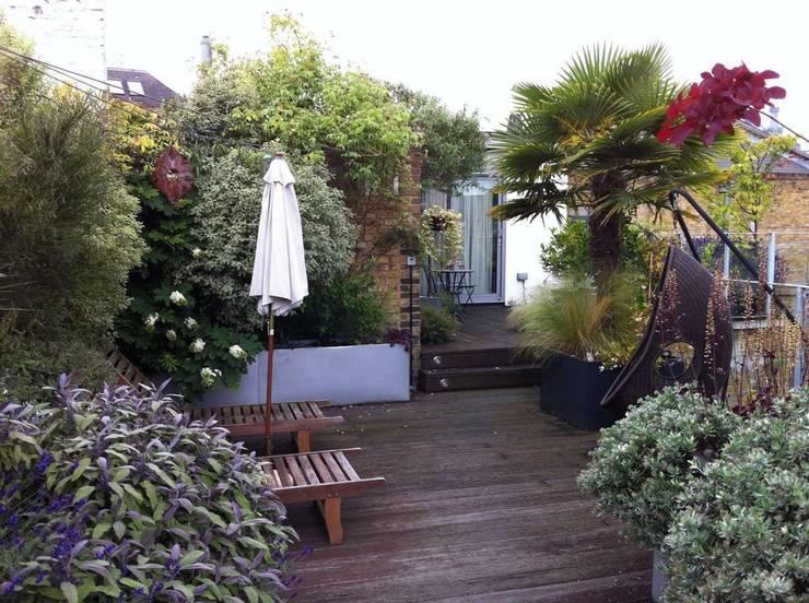 Garden In The Sky:  Garden by Cool Gardens Landscaping