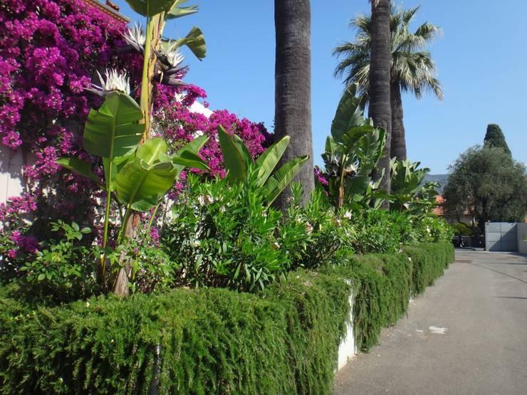 Paysagiste Saint Jean Cap Ferrat: Jardin de style de style Méditerranéen par Nelumbo