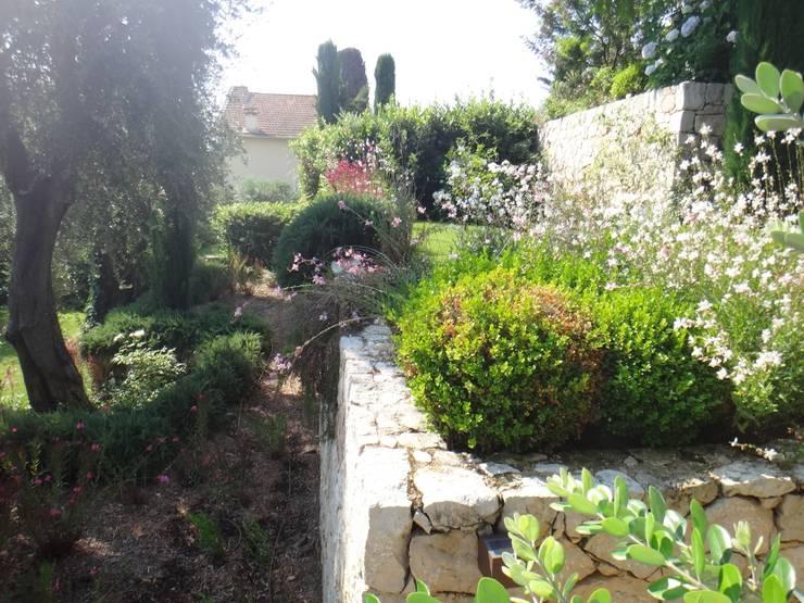 Paysagiste Saint Jean Cap Ferrat: Jardin de style  par Nelumbo