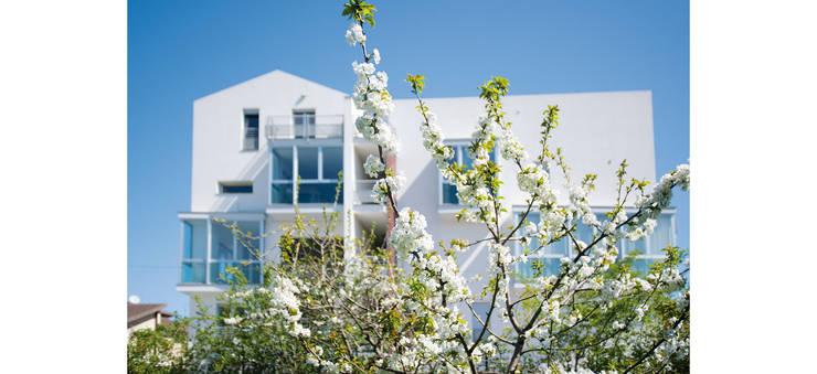 Palazzina residenziale V : Case in stile  di Studio Zero85, Moderno