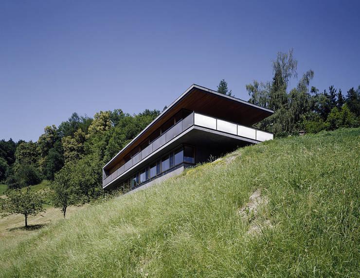 Haus B:  Häuser von Dietrich | Untertrifaller Architekten ZT GmbH
