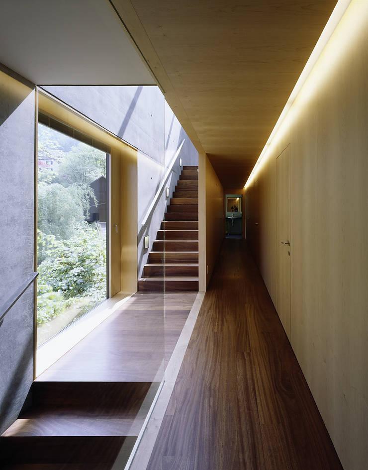Haus R:  Flur & Diele von Dietrich | Untertrifaller Architekten ZT GmbH,Modern