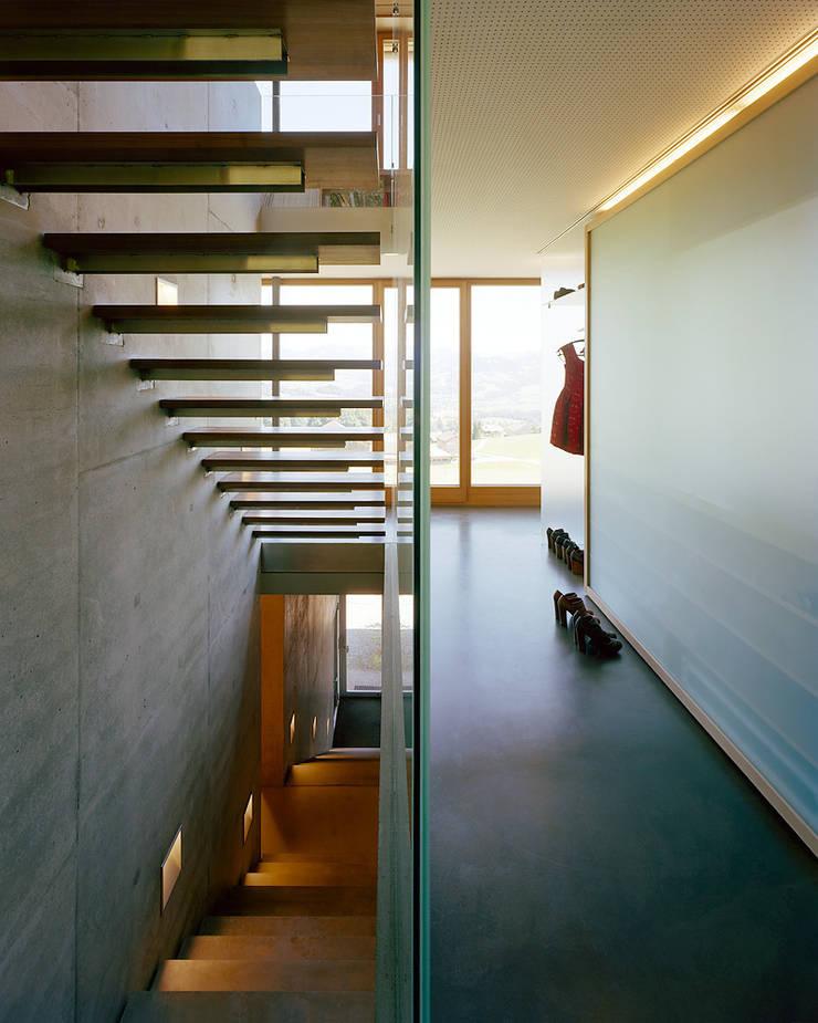 Haus K:  Flur & Diele von Dietrich | Untertrifaller Architekten ZT GmbH,