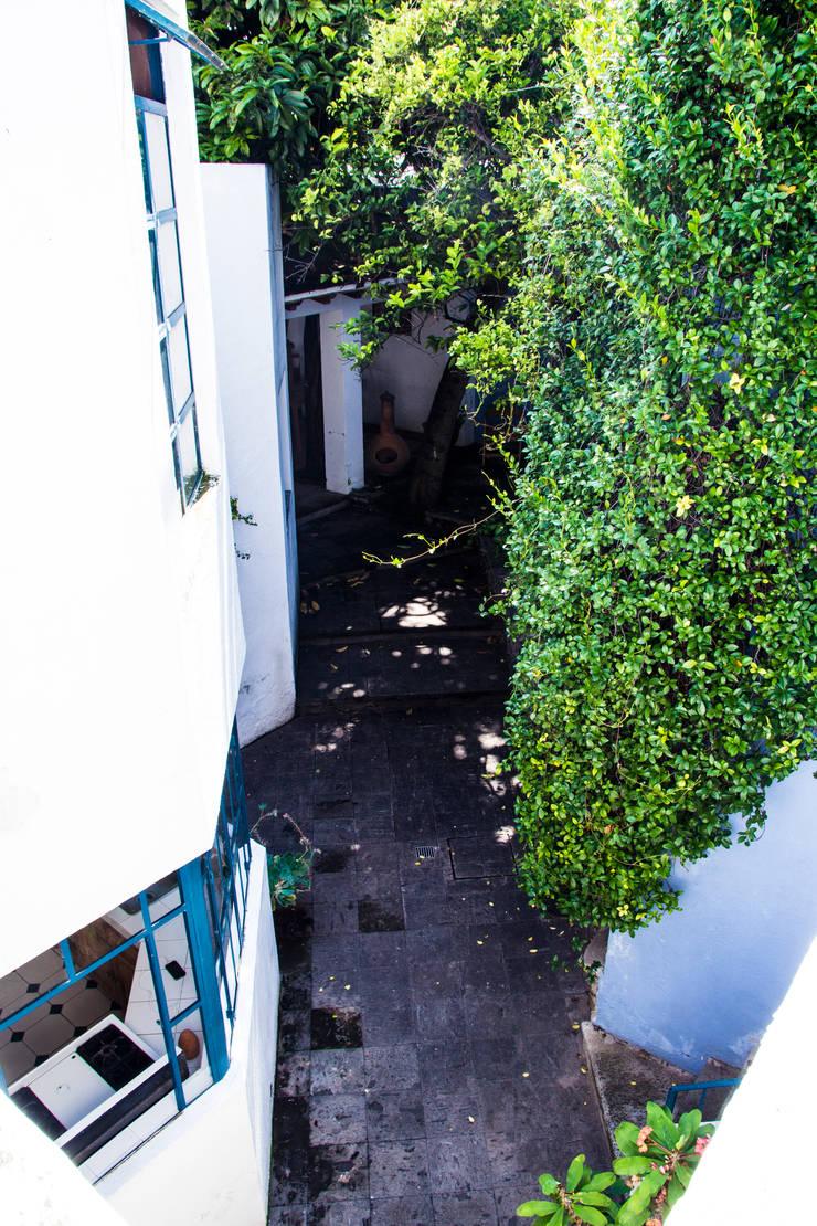 Conexión: Jardines de estilo  por Mikkael Kreis Architects