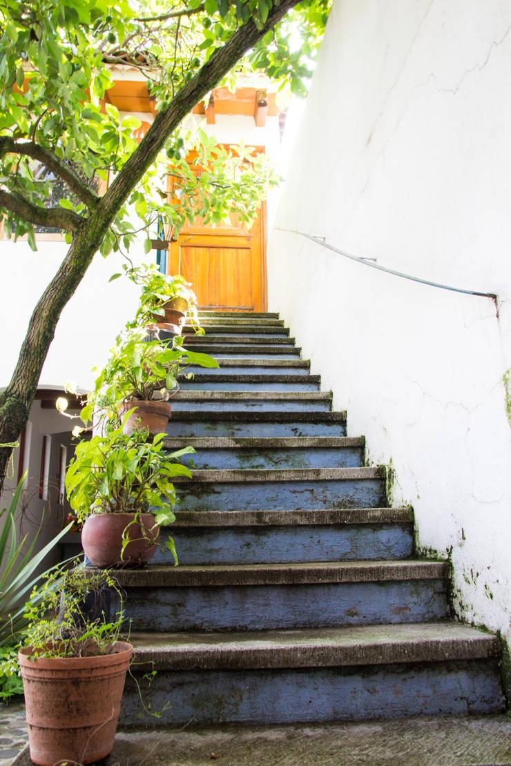 La escalera: Pasillos y recibidores de estilo  por Mikkael Kreis Architects