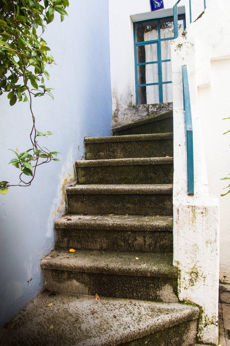 La otra escalera: Pasillos y recibidores de estilo  por Mikkael Kreis Architects