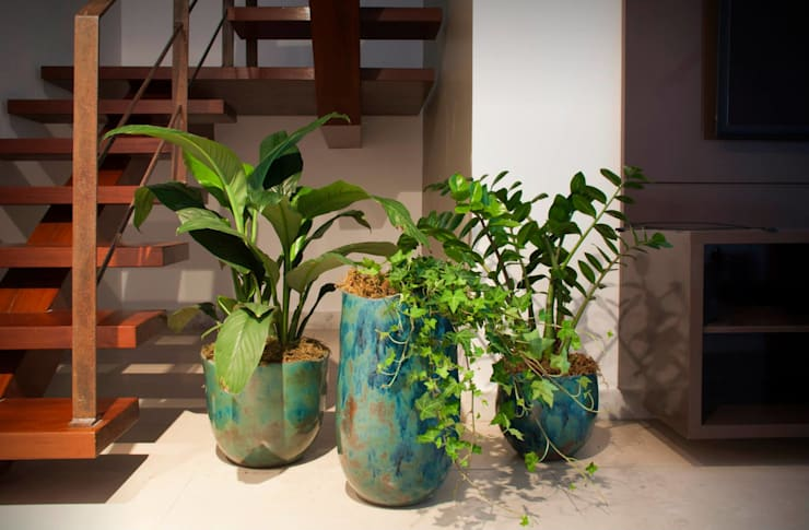 Projeto LM 2014: Paisagismo de interior  por Luiza Soares - Paisagismo