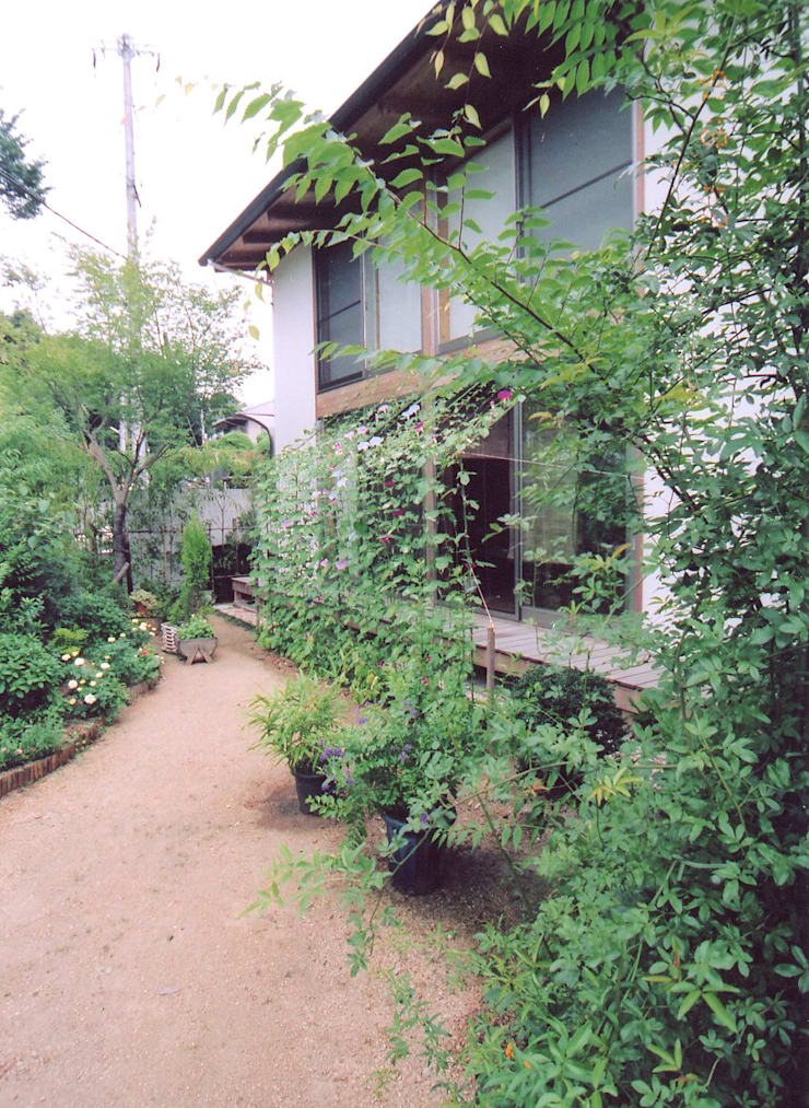 庭の植物たち: ARKSTUDIO一級建築士事務所が手掛けた家です。