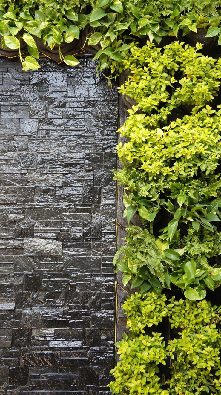 Jardín vertical : Jardín de estilo  de CONILLAS - exteriors