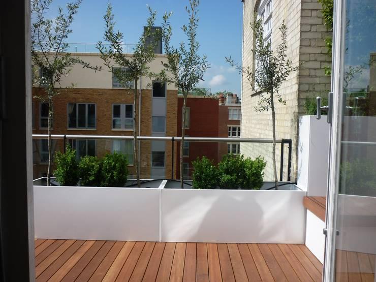 Roof terrace 1:  Terrace by Paul Newman Landscapes