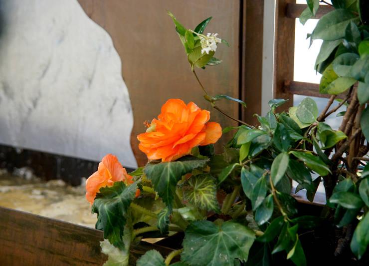 Detalle jardinera - Viveros Peña: Jardín de estilo  de Slabon  Forja Creativa