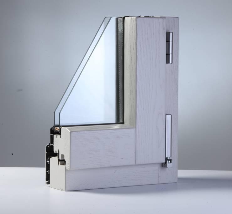 Projekty,  Okna i drzwi zaprojektowane przez ANGER SRL