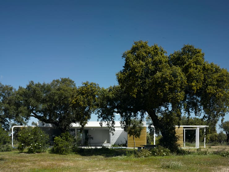 Casa en un encinar: Casas de estilo  de Murado & Elvira