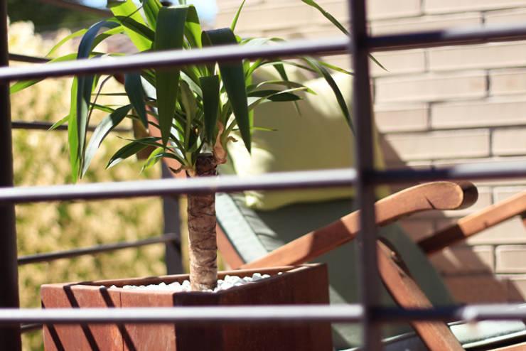 T: Jardín de estilo  de CLASS MANUFACTURING SA