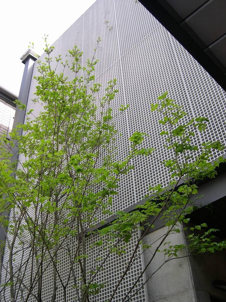 グリーンフェンスとシンボルツリーのヤマボウシ: 原 空間工作所 HARA Urban Space Factoryが手掛けた現代のです。,モダン