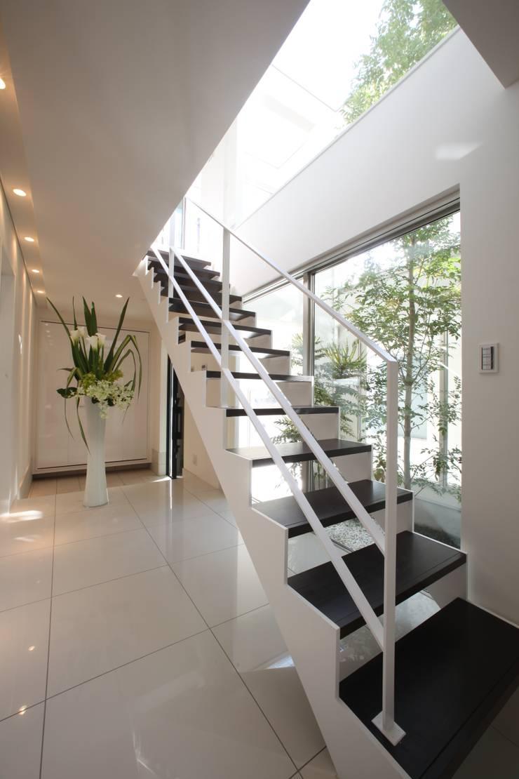 光が差し込む階段 モダンスタイルの 玄関&廊下&階段 の TERAJIMA ARCHITECTS モダン