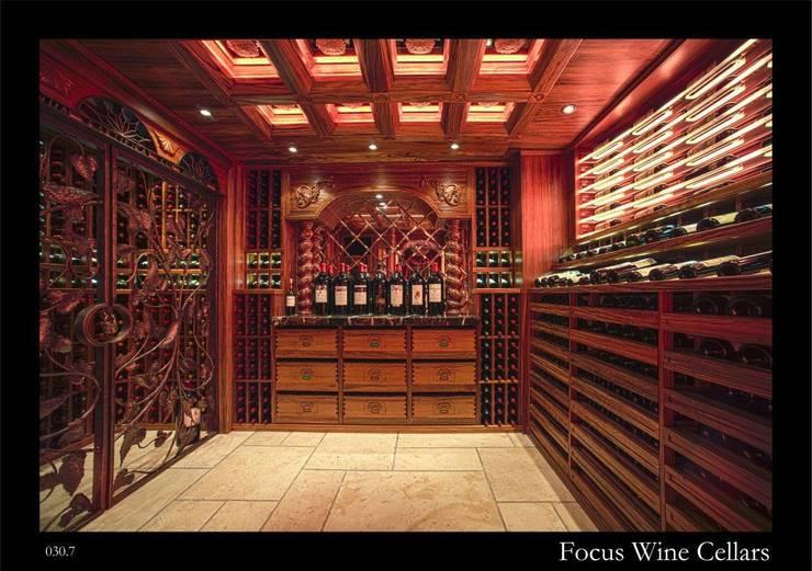 Residential Cellar in HoManTin, Hong Kong:   by Focus Wine Cellars
