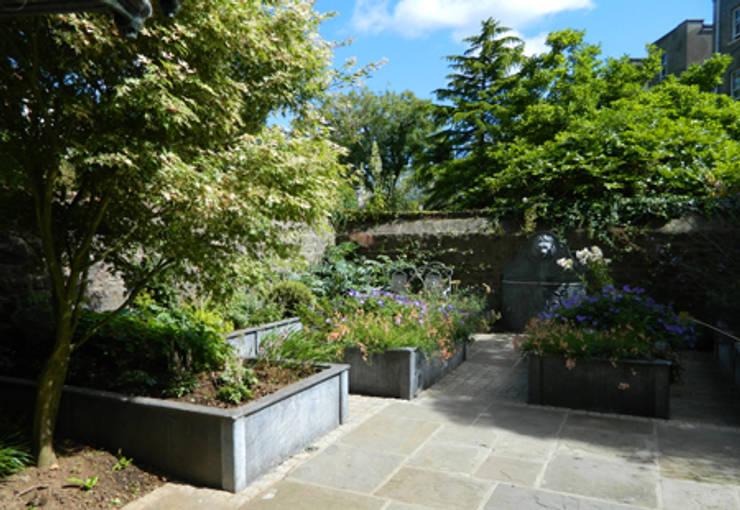a courtyard garden in clifton:   by Alex Johnson landscape