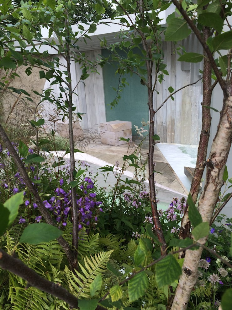 Garden of Solitude - RHS Hampton Court Palace 2014 Silver Gilt Award and 'Best in Category':   by Alexandra Froggatt Design