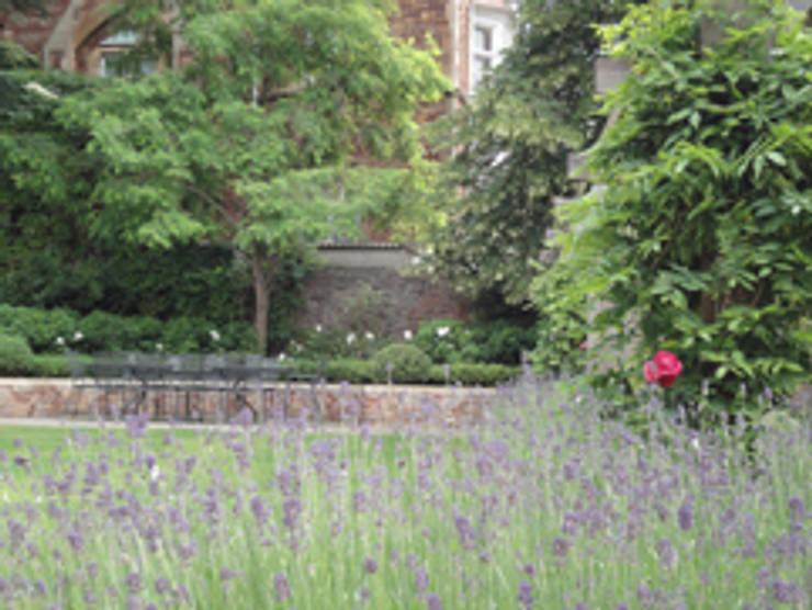 clifton family garden:  Garden  by Alex Johnson Landscape Design