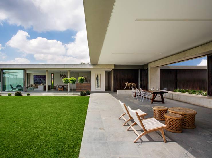 House 01, Hyde Park :  Garden by Daffonchio & Associates Architects