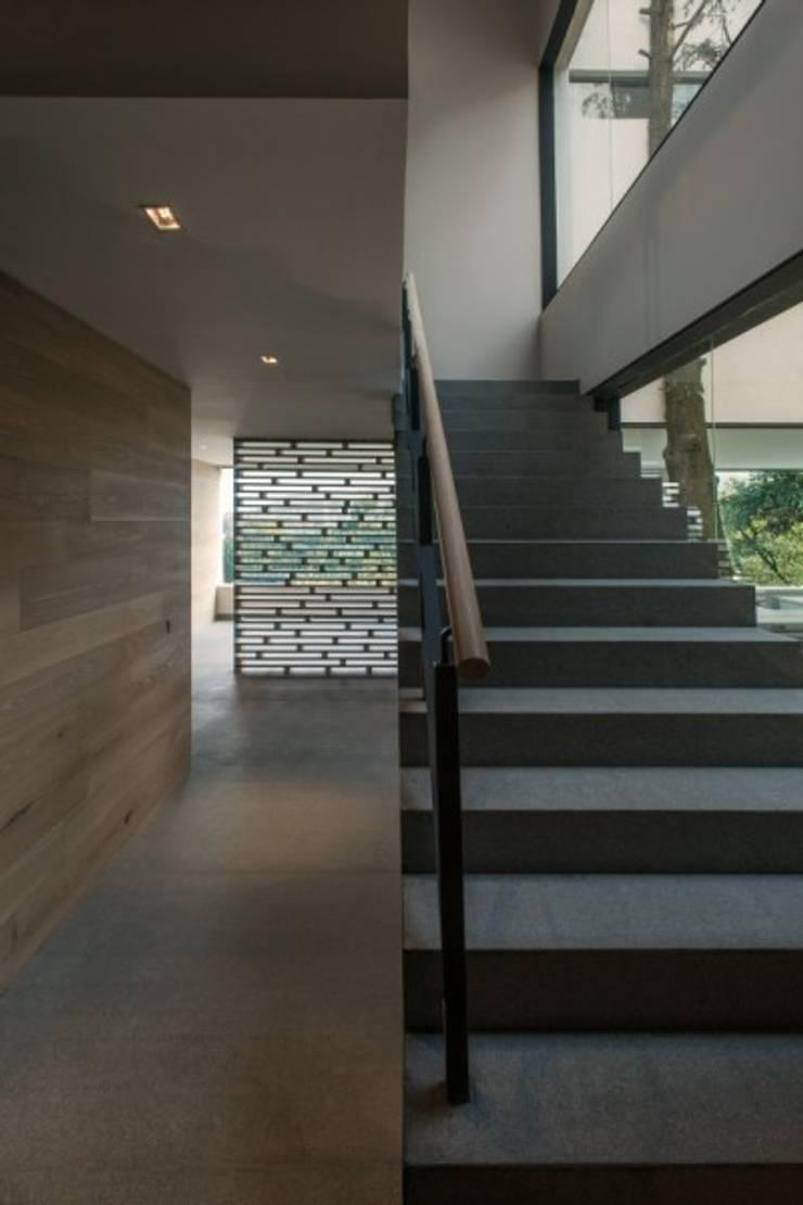 Escalera Principal Hacia Comedor:  de estilo  por Rhyzoma - Arquitectura y Diseño