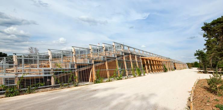 Stade Equestre de Fontainebleau: Jardin d'hiver de style  par Joly&Loiret, Agence d'architecture