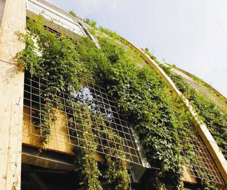 Green walls:  Garden by Viridian Landscape Studio