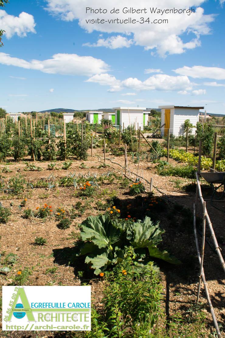 Garden by Architecte Egrefeuille Carole