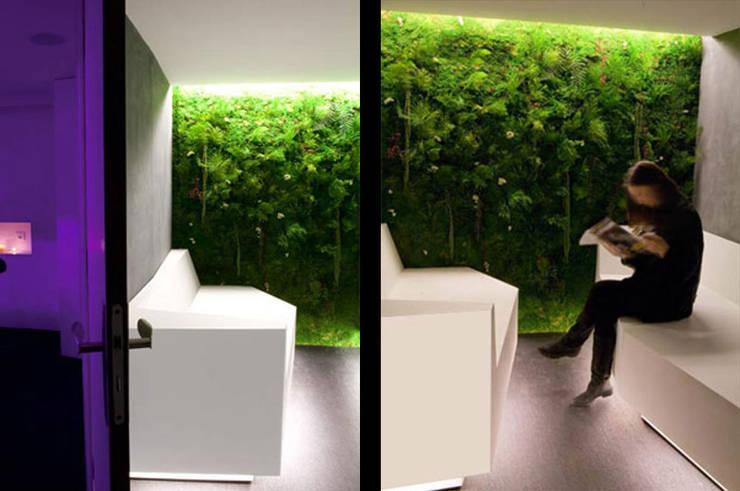 Mur végétale espace d'attente: Espaces commerciaux de style  par Galaktik
