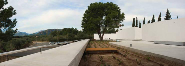 AMPLIACIÓN CEMENTERIO MUNICIPAL:  de estilo  de Jofre Roca arquitectes