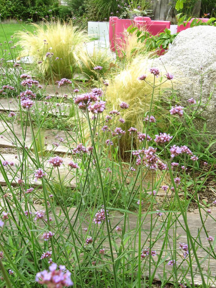 Jardin privé à Colmar : Jardin de style  par SCHAEDELE PAYSAGISTE