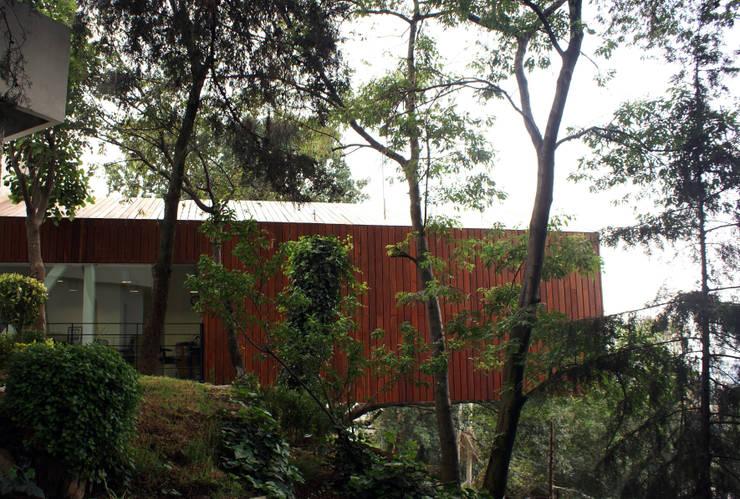 CIDE CAF: Oficinas y tiendas de estilo  por Arquitectonica P+E