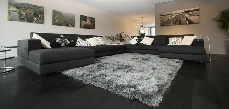 ALPHENBERG: Paredes y pisos de estilo  por ELEMENTO 3 / SAFRETTI/ HORUS/ ALPHENBERG/ JESS/ OI SIDE /ARKIT