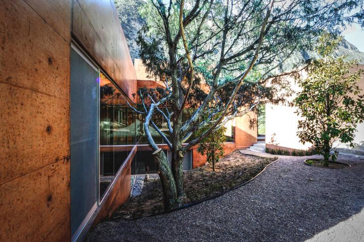 Casa Narigua : Jardines de estilo moderno por P+0 Arquitectura