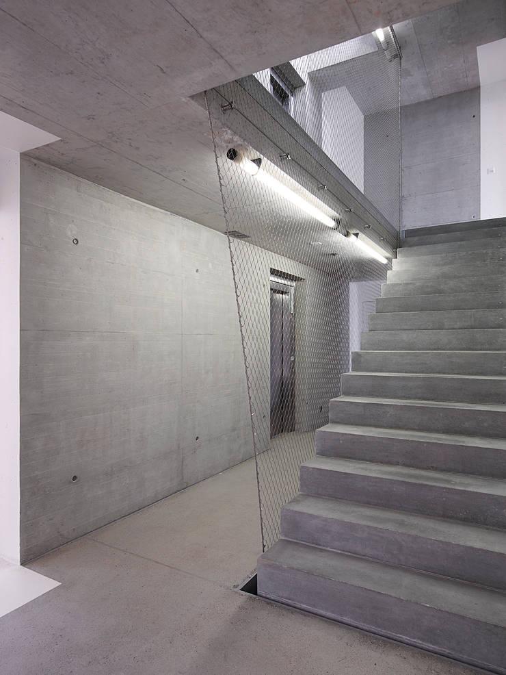 cage d'escalier: Maisons de style  par TRIBU architecture