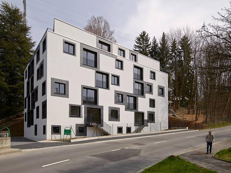 façade sud depuis le chemin de Boissonnet: Maisons de style  par TRIBU architecture