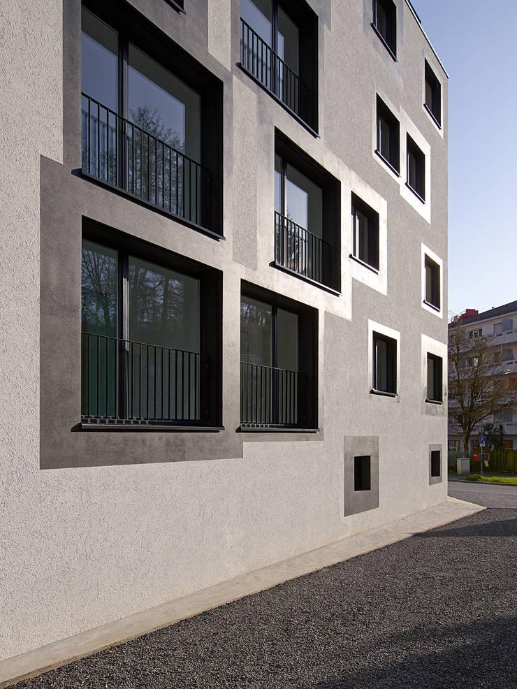 encadrement des fenêtres: Maisons de style  par TRIBU architecture