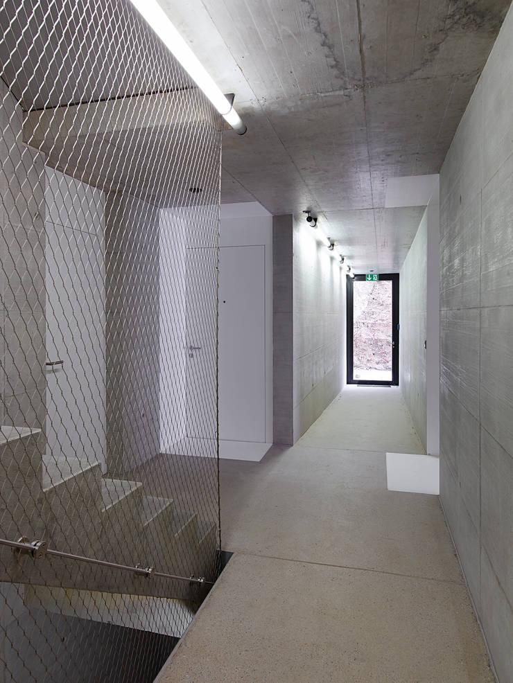 entrée : Maisons de style  par TRIBU architecture
