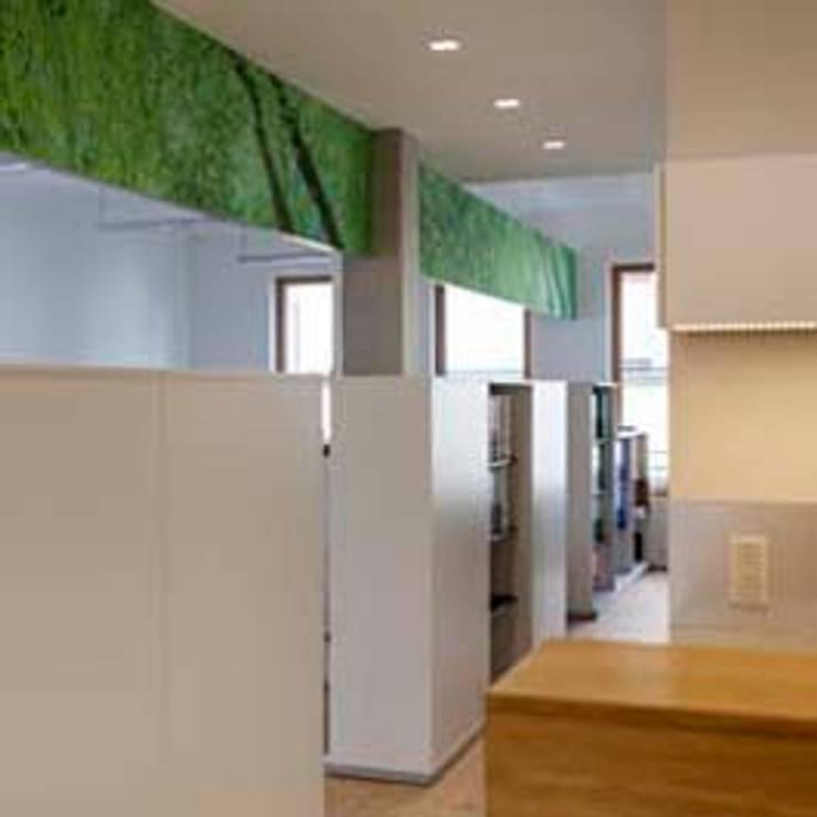 Akustikpaneel:  Bürogebäude von armbruster innenarchitektur,