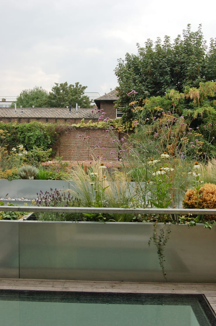 Fentiman Road, Vauxhall:  Terrace by Emmett Russell Architects