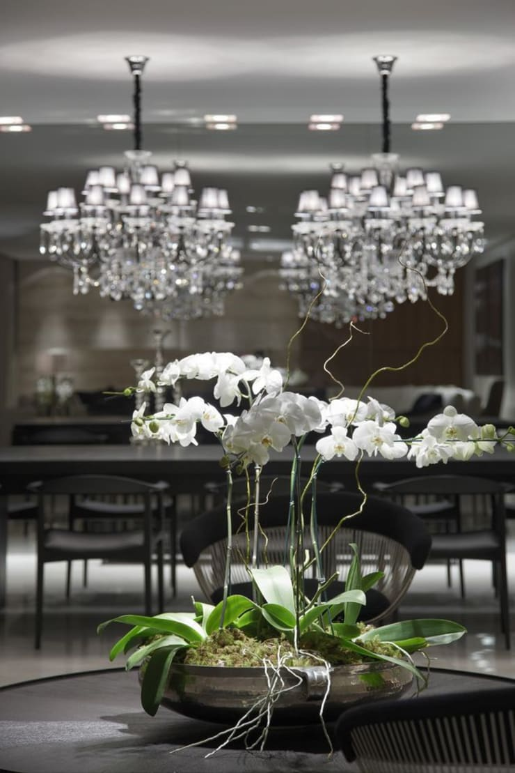 Apartamento Belvedere: Casas  por Graziella Nicolai Arquitetura e Interiores