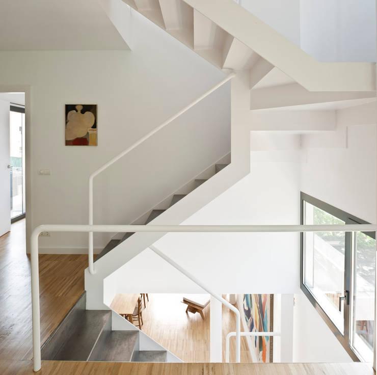 niveles: Pasillos y vestíbulos de estilo  de hollegha arquitectos