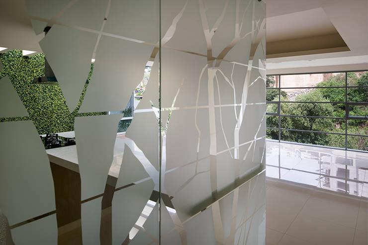 TM HOUSE : Pasillos y recibidores de estilo  por Micheas Arquitectos