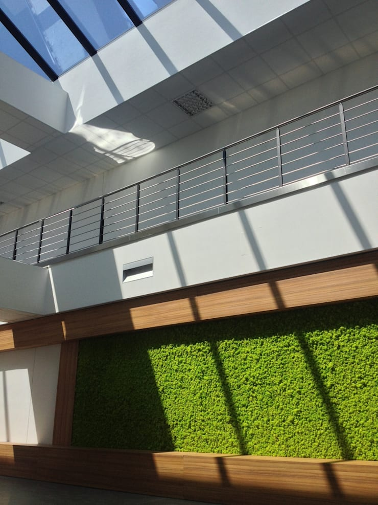 GIARDINO VERTICALE: Pareti in stile  di Studio Pastore Architettura,