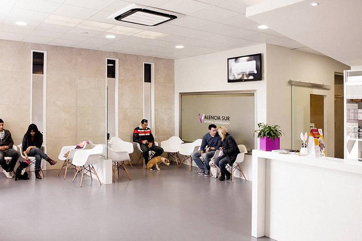 SALA DE ESPERA Y SALA DE CONFERENCIAS: Oficinas y Tiendas de estilo  de Sheila Cuello design