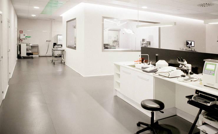 DISEÑO DE MESA DE LABORATORIO: Oficinas y Tiendas de estilo  de Sheila Cuello design