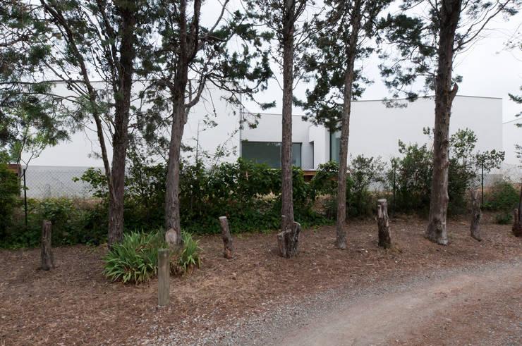 Façade Sud: Maisons de style de style Minimaliste par Frédéric Saint-cricq Architecte
