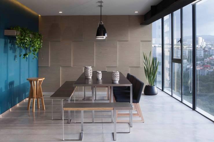 Departamento contemporáneo en Bosques de las Lomas: Comedores de estilo  por Taller David Dana Arquitectura
