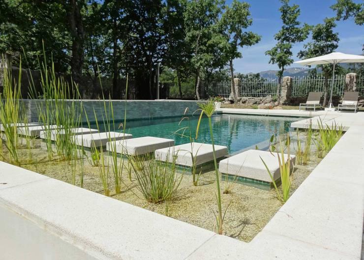 la casa como espacio vital: Piscinas de estilo  de hollegha arquitectos
